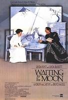 В ожидании Луны (др. название «Ожидая Луну»)